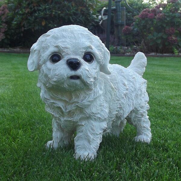 Gartenfigur Hund Westi Malteser Welpe Bichon Frise 8648W Garten Deko Figur