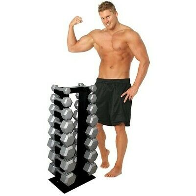 8 Pair Vertical Dumbbell Rack by Deltech Fitness- MADE IN USA!