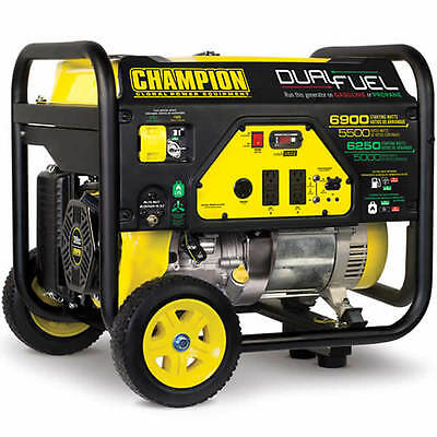 Champion 100231 - 5500 Watt Dual Fuel Portable Generator