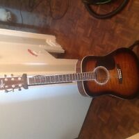 Robison guitar w/Hercules stand