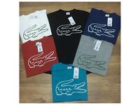 Lacoste tshirts Clearance clothing