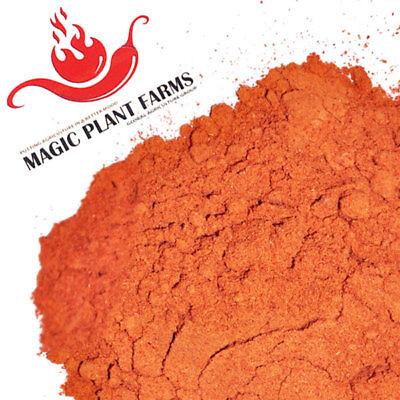 Habanero Powder / Pure Habanero Pepper Powder 1LB - Very Hot Chili Powder