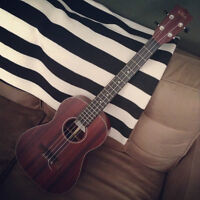 Beginner Summer ukulele and guitar lessons