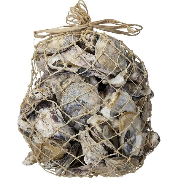 Oyster Shells in  Abaca Net Bag