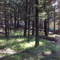 Lot for sale,crowsnest pass,Coleman alberta