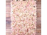 Pink and cream flower Wall