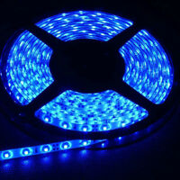 Blue Led  Strip +12v wall adapter