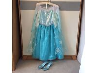 Elsa Frozen dress and/or shoes