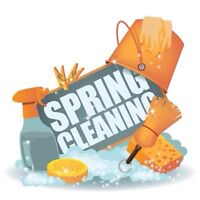 Leave Your Spring Cleaning To Me