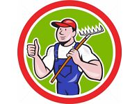 Lawn&Garden\Care&Cleaning