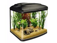 Love Fish Panorama Tank 64 Litre and stand with accessories £80 ONO