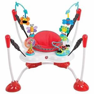 Sassy Bounce Around - Baby bouncer Prospect Prospect Area Preview