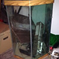 Fish tank n everything in it.
