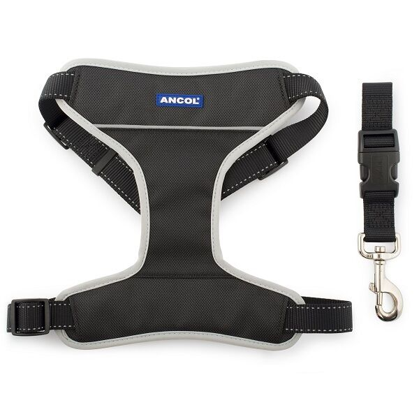 Ancol Dog Padded Car & Walking Harness Travel Seatbelt Clip Lead Safety - Black