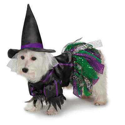 Dog Halloween Costume Scary Witch Costumes Dress Pet BRAND NEW Zack & Zoey