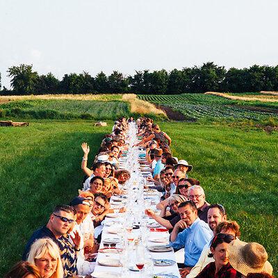 Hochzeit feiern mitten im Feld: einzigartig und unvergesslich. (© outstandinginthefield.com)