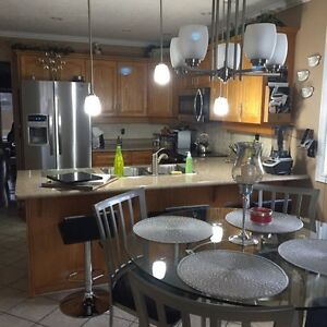 Stainless steel dining set Cambridge Kitchener Area image 4