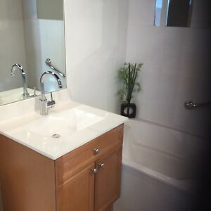 Bathtub replacement from $4699.00 +t tax complete Edmonton Edmonton Area image 2