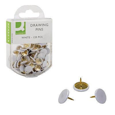 Q-Connect White Drawing Pins  KF02019Q