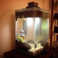 Fluval chi 6.6 gallon tank and marina slim 15 filter