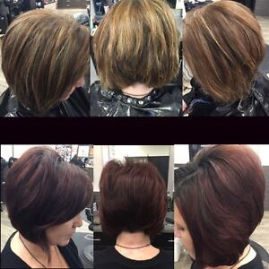 Experienced Hairstylist December promo 20% off services!!! Strathcona County Edmonton Area image 2