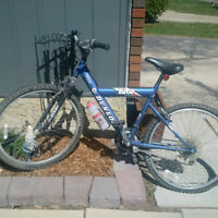 Dunlop Mountain Bike in good condition