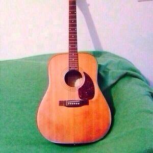 Norman Accoustic Guitar
