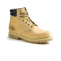 Dickies Steel toe Safety Boots Size 10 !!!!!!!!!!!!!!!!!!!!!!!!!