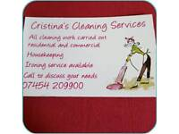 Professional cleaning, ironing services
