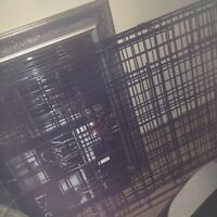 Metal wired dog crate