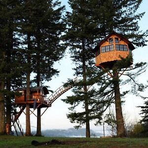 Looking for treed land about 2 acres for art studio/treehouse