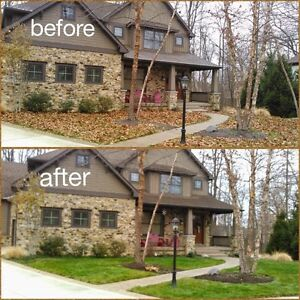 Leaf removal - Fall cleanup service Kitchener / Waterloo Kitchener Area image 3