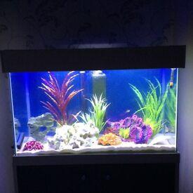 Aquarium for sale,,