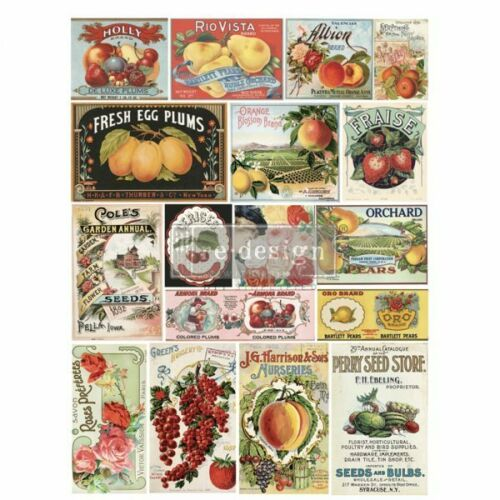 Re-Design with Prima VINTAGE SEED Transfer Home Decor - NEW