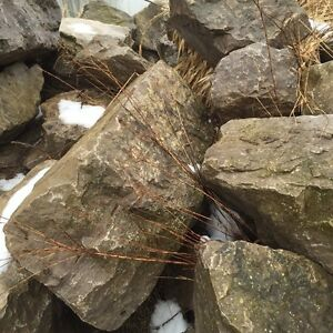 Landscaping rock 100 pieces $1500 Cambridge Kitchener Area image 3