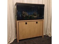 Fish tank set up for sale