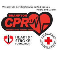 STANDARD FIRST AID CPR