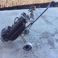 Golf clubs bag and cart