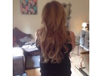 Lush Locks Hair Extensions and Tanning