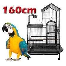 162cm bird cage L shape Aviary with Gym Riverwood Canterbury Area Preview