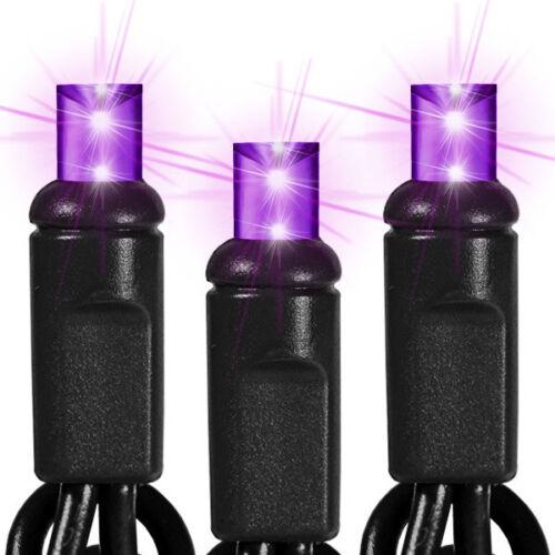 Halloween Led Purple Lights Mini wide angle Light Set, 60 Lights Indoor/Outdoor