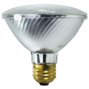4 Flood Lights Security Light bulbs -Outdoor Lights ($2 ea.)