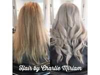 Hair by Charlie Miriam @ Beauty & The Ink