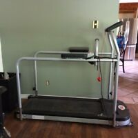 Treadmill with parallel Bars