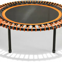 Used Bellicon Trampoline Rebounder wanted