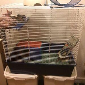 Cage pour rongeur et nourriture acana pour chat