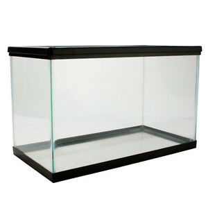 10Gal Fish/Reptile Tank with lid