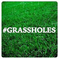 GRASSHOLES Lawn Aeration Services