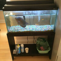 WTS 35 Gallon Fish tank with all necessary accessories