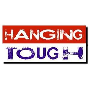 Sydney Handyman Services - Hanging Tough Sydney City Inner Sydney Preview